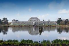 Palmowy dom, ikonowy Wiktoriański glasshouse który odtwarza tropikalnego lasu deszczowego klimat lokalizował przy Kew ogródem, An Zdjęcie Royalty Free
