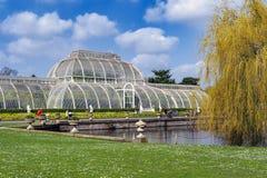 Palmowy dom, ikonowy Wiktoriański glasshouse który odtwarza tropikalnego lasu deszczowego klimat lokalizował przy Kew ogródem, An Fotografia Stock