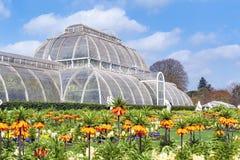 Palmowy dom, ikonowy Wiktoriański glasshouse który odtwarza tropikalnego lasu deszczowego klimat lokalizował przy Kew ogródem, An Fotografia Royalty Free