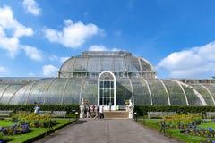 Palmowy dom, ikonowy Wiktoriański glasshouse który odtwarza tropikalnego lasu deszczowego klimat lokalizował przy Kew ogródem, An Obrazy Stock