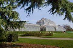 Palmowy dom przy Kew ogródami, Londyn UK. Zdjęcie Stock