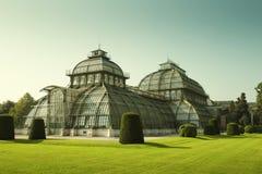 Palmowy dom w parku Schonbrunn pałac w Wiedeń, Austria Obraz Royalty Free