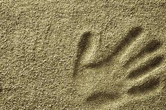Palmowy druk na suchym piasku Fotografia Stock