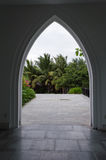 Palmowy gaju widok w czerń łuku sylwetce Obraz Royalty Free