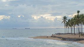 Palmowy i Błękitni morze Ondina Salvador Bahia Brazylia i niebieskie niebo fotografia royalty free