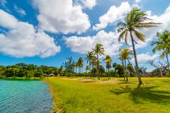 Palmowy i jeziorny raj w Snyder parku Fort Lauderdale, Floryda, usa obrazy royalty free
