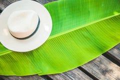 Palmowy liść, słomianego kapeluszu lata tła Odgórny widok Zdjęcie Royalty Free