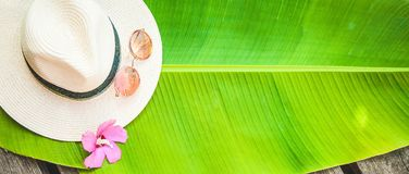 Palmowy liść, słomiany kapelusz, różowy okulary przeciwsłoneczni lata tło Zdjęcie Stock