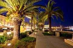 Palmowy nabrzeże Rozszczepiony wieczór widok obraz royalty free