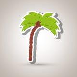 palmowy projekt Zdjęcia Royalty Free
