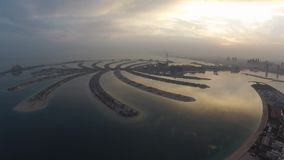 Palmowy widok od powietrza wcześnie w ranku zbiory wideo