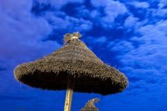 Palmparasol op maanlichtstrand Stock Foto's