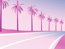 PalmRoad Royalty Free Stock Image