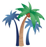 Palms. Three palms on a white background Stock Photography