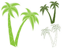 Palms Royalty Free Stock Photo