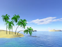 Palms. Hawaii islands bay with palms Stock Images
