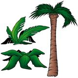 Palms. 5 - three colored cartoon illustration as vector Royalty Free Stock Photography