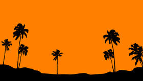 Palms. Palm horizon on orange background Royalty Free Stock Images