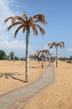 Palms along the track on the city beach in Kerch Royalty Free Stock Photo