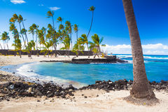 Palms and ancient Hawaiian dwellings Stock Image