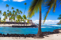 Palms and ancient Hawaiian dwellings Royalty Free Stock Photography