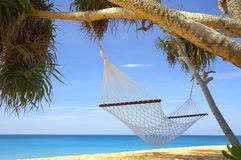 Free Palms And Hammock Stock Photo - 3889880