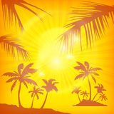 Palms background in yellow Royalty Free Stock Photography