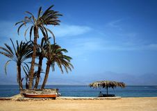 Palms, beach and men Stock Images