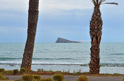 Palms And Benidorm Island Royalty Free Stock Image