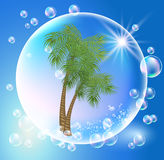 Palms and bubbles Royalty Free Stock Photo