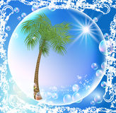 Palms and bubbles Stock Photography