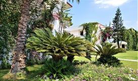 Palms and bungalows in Kemer, Antalya province, Turkey, Mediterranean sea stock photos