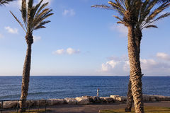 Palms, coast of Mediterranean Sea, playing children, run above big stones Stock Images