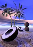 Palms and coconut Royalty Free Stock Image