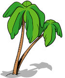 Palms. Colored Cartoon Illustration, Vector Royalty Free Stock Images