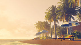 Palms, deckchairs and parasols on a tropical beach Royalty Free Stock Image