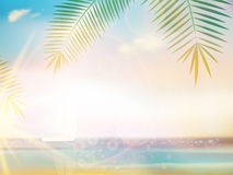 Palms on empty idyllic tropical sand beach. Royalty Free Stock Photos