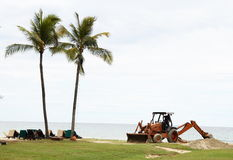 Palms and an excavator. Two palms and an excavator on a beach Stock Images