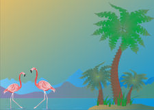 Palms and flamingo Royalty Free Stock Images