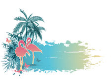 Palms and flamingo Stock Images
