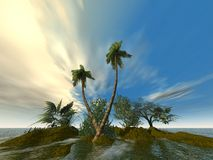 Palms from ground. Deserted Island with palms 3d render Stock Photography