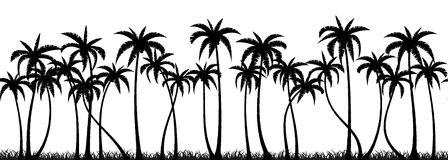 Palms grove silhouette Royalty Free Stock Images