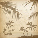 Palms grunge background Royalty Free Stock Photos