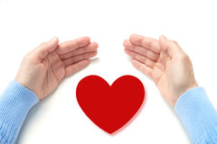 Palms and  heart Royalty Free Stock Image