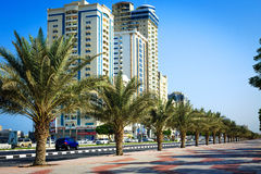 Palms and hotels in Ras Al Khaimah, UAE Royalty Free Stock Image