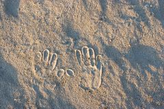 Palms imprint on beach sand Royalty Free Stock Image