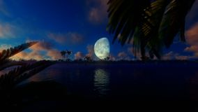 Palms island and aircraft passing against blue moon. Hd video stock video footage