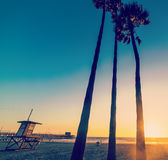 Palms and lifeguard tower in Newport Beach Stock Image