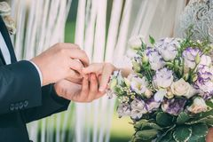 Palms of the newly-married couple with wedding rings.  Royalty Free Stock Photos