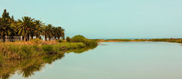 Palms next to Lake in Tunisia. A small lake in Tunisia located in Rades . A paronamic view :a road , reflection on water , beach and sea Royalty Free Stock Image